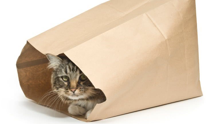 Goedkoop is duurkoop versus de kat in de zak