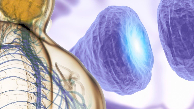 Nieuwe vormen van ruggenmergstimulatie voor de behandeling van chonische pijn